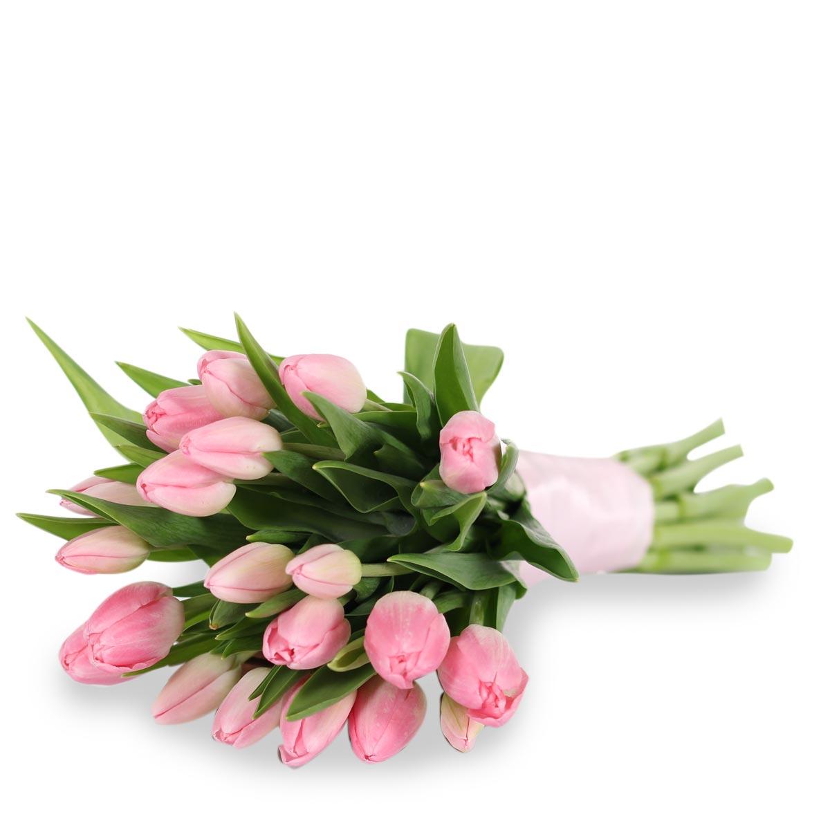wb1618-pink-tulip-bridal-bouquet0675c0a8350a62b6a920ff0000e4902b