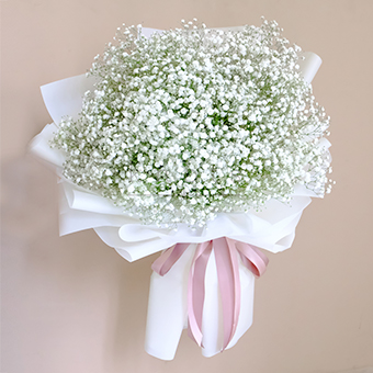 Simply Elegant (Gypsophila Bouquet)