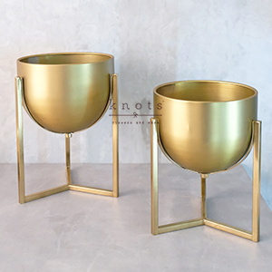 Gold Metal Container with Stand