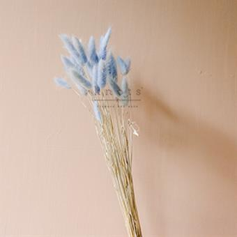 Blue Dried Bunny Tails