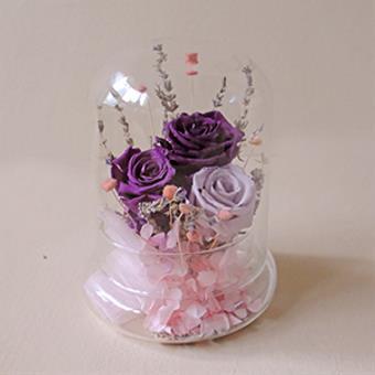 Lilac Reverie